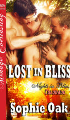 Review Post : Lost in Bliss by Sophie Oak (5 Stars)